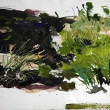 John O'Connor, Bog Hole, 2006, watercolour on paper, 68.5 x 53cm