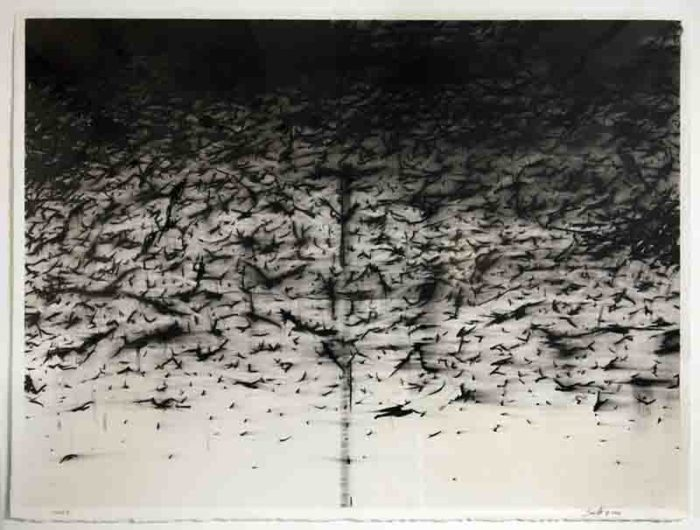 Seán Cotter, Noise III, 2006, charcoal drawing on watercolour paper, 98 x 78cm