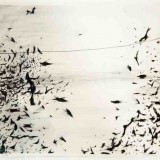 Seán Cotter, Noise IV, 2006, charcoal drawing on watercolour paper, 98 x 78cm